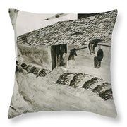 Beside The Watery Path Throw Pillow