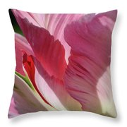 Besotted Throw Pillow