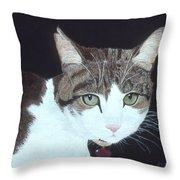 Best Cat Throw Pillow