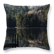 Best Chair At The Pond Throw Pillow