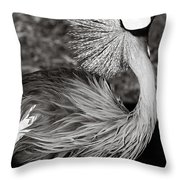 Best Feathers Ever Throw Pillow