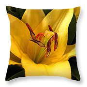 Best Of The Bunch Throw Pillow