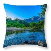Betari River Throw Pillow