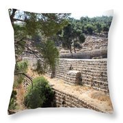 Bethlehem - Solomon's Pools Throw Pillow