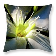 Between Darkness And Light 2017 005 Throw Pillow