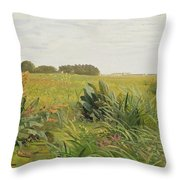 Between Geest And Marsh Throw Pillow by Valentin Ruths