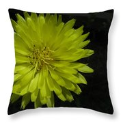 Between Orange And Green Throw Pillow