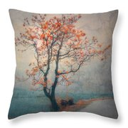 Between Seasons Throw Pillow