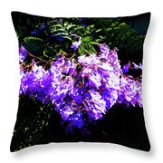 Between The Darkness And The Light 2017 002 Throw Pillow