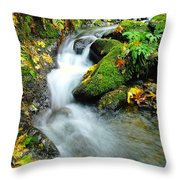 Betwixt The Mossy Rocks Throw Pillow