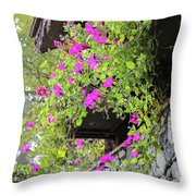 Beutiful Flowers Hang The Wall . Throw Pillow