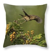 Bewick's Wren Throw Pillow