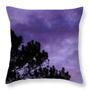 Beyond Dusk In The South Throw Pillow