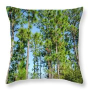 Slash Pines Throw Pillow