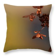 Beyond Summer  Throw Pillow