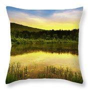Beyond Sunset Landscape Throw Pillow