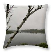 Beyond The Birches Throw Pillow