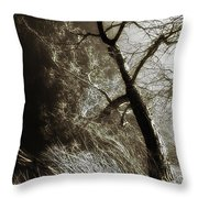 Beyond The Eyes Throw Pillow