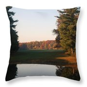 Beyond The Gardens Throw Pillow