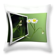 Beyond The No Fly Zone Throw Pillow