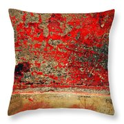 Beyond The Peeling Paint Throw Pillow