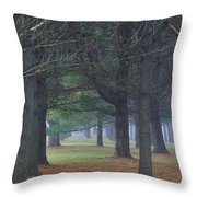 Beyond The Pines Throw Pillow