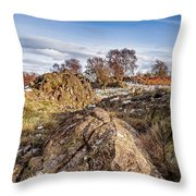 Beyond The Rocks Throw Pillow