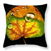 The Living Universe Throw Pillow