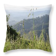 Beyond The Grass Throw Pillow