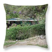 Bicycle In The Yard Throw Pillow