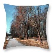 Bicycle Path Throw Pillow