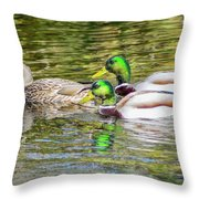 Bidwell Ducks In Fall Throw Pillow