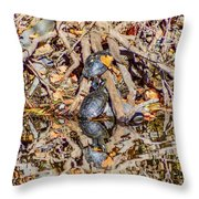 Bidwell Turtles In Fall Throw Pillow
