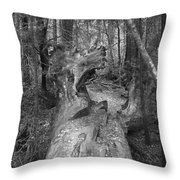 Big Basin 2 Throw Pillow
