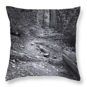 Big Basin Redwoods Sp 1 Throw Pillow