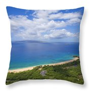 Big Beach Aerial Throw Pillow