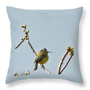 Big Beak Throw Pillow