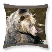 Big Bear Throw Pillow