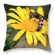 Big Bee On Yellow Daisy Throw Pillow