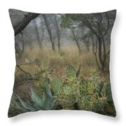 Big Bend Fog On Lost Mines Trail Throw Pillow