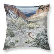 Big Bend Window With Snow Throw Pillow