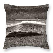Big Berg Throw Pillow