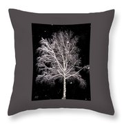 Big Birch Throw Pillow