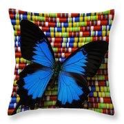 Big Blue Butterfly Throw Pillow