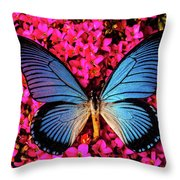 Big Blue Butterfly On Kalanchoe Flowers Throw Pillow