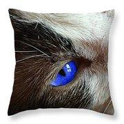 Big Blue Eyes Cat Throw Pillow