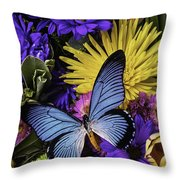 Big Blue Wings Throw Pillow