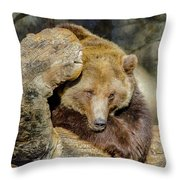 Big Brown Bear Throw Pillow
