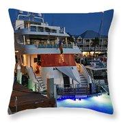 Big Buck On The Sea  Throw Pillow