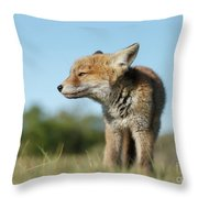 Big But Little Throw Pillow